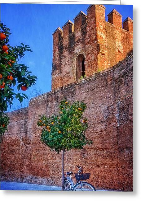Brick Architecture Greeting Cards - Old Walls Orange Trees and a Bike Greeting Card by Joan Carroll