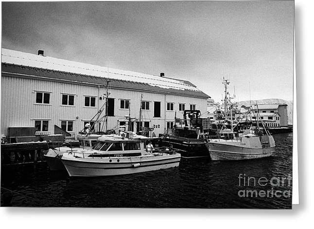 Scandanavian Greeting Cards - old warehouses and small fishing boats Honningsvag harbour finnmark norway europe Greeting Card by Joe Fox
