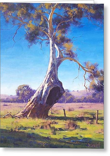 Australian Tree Greeting Cards - Old Warrior Greeting Card by Graham Gercken