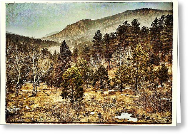 Old Western Photos Digital Art Greeting Cards - Old West Greeting Card by Dan Miller