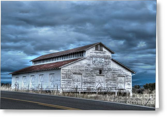 Orchard Greeting Cards - Old White Barn Greeting Card by Juli Scalzi