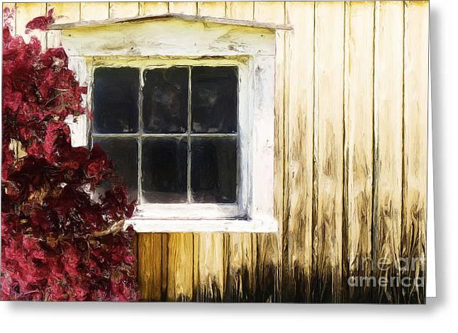 Greeting Cards - Old White Window Greeting Card by Martin Dzurjanik