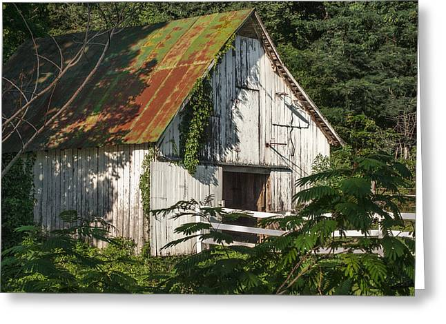 Tennessee Barn Greeting Cards - Old Whitewashed Barn in Tennessee Greeting Card by Debbie Karnes