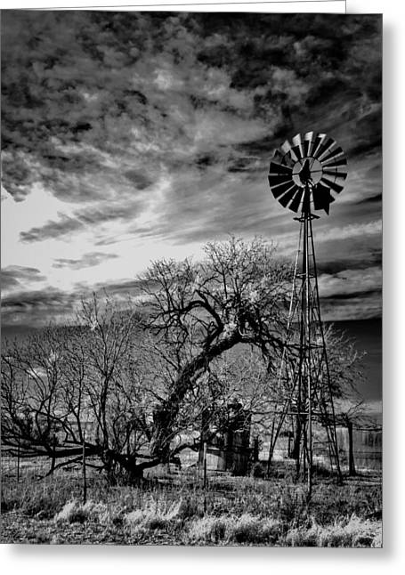 Windmill And Tree Greeting Cards - Old Windmill in Texas Greeting Card by Mountain Dreams