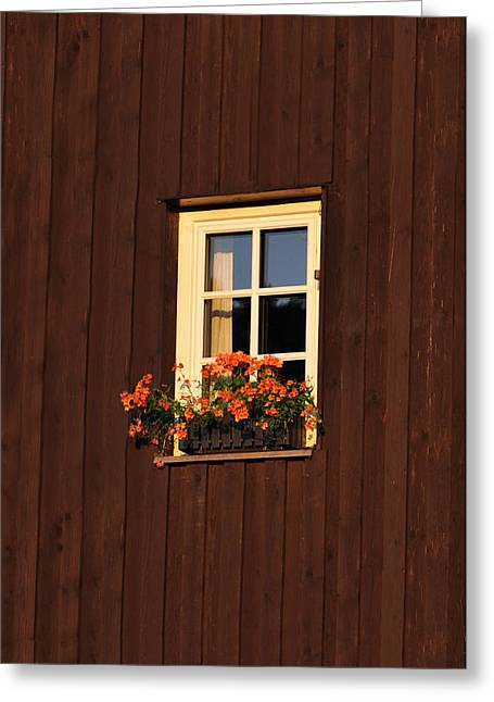 Barn Wood Greeting Cards - Old Window Greeting Card by Aged Pixel