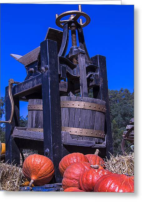 Blue Grapes Greeting Cards - Old Wine Press Greeting Card by Garry Gay