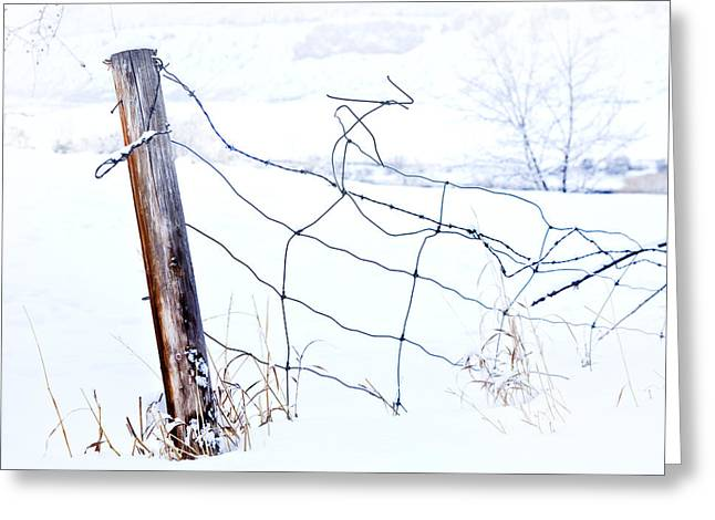 Fenceline Greeting Cards - Old Wire Fence Greeting Card by Theresa Tahara