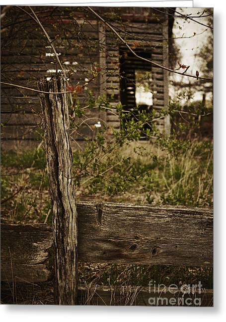 Painted Wood Greeting Cards - Old Wooden Fence Greeting Card by Margie Hurwich