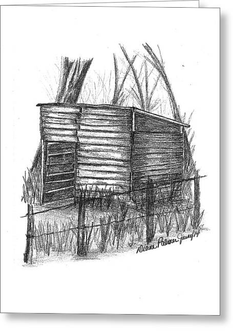 Old Barn Drawing Greeting Cards - Old Wooden Shed Greeting Card by Diane Palmer