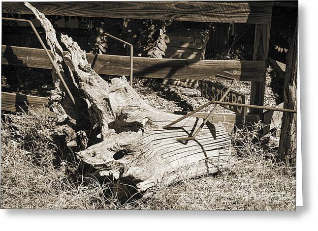 Framed Old Door Print Greeting Cards - Old Wooden Stump wit Iron in Sepia 3010.01 Greeting Card by M K  Miller