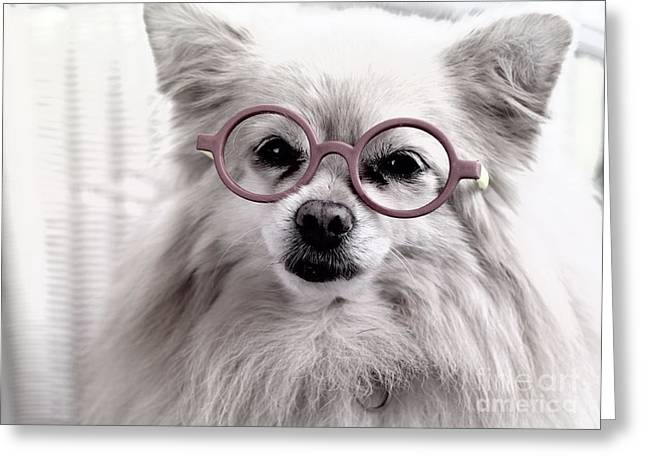 Dog Head Greeting Cards - Older and Wiser Greeting Card by Charline Xia