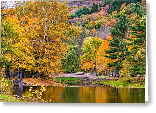 Bull Creek Greeting Cards - Ole Bull State Park 2 Greeting Card by Steve Harrington