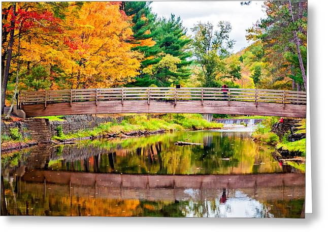 Fishing Creek Digital Greeting Cards - Ole Bull State Park paint Greeting Card by Steve Harrington