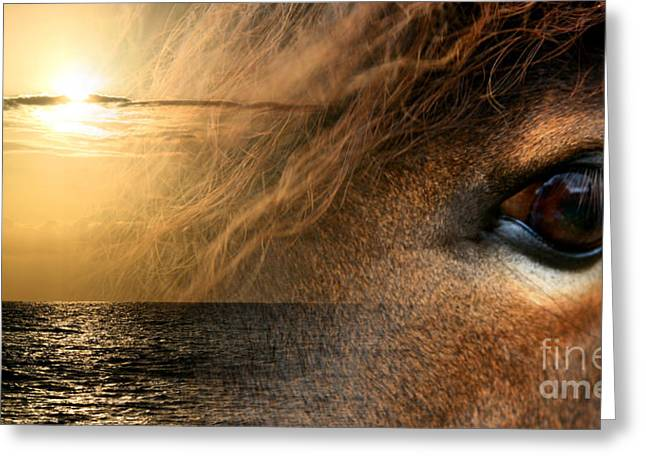 Surreal Fantasy Horse Fine Art Greeting Cards - Oli no au i na pono  Greeting Card by Sharon Mau
