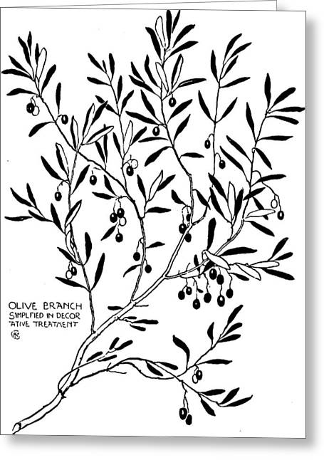 Olive Drawings Greeting Cards - Olive Branch Simplified in Decor Greeting Card by