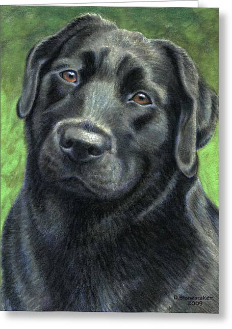 Olive Drawings Greeting Cards - Olive Greeting Card by Debbie Stonebraker