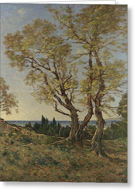 Olive Trees At Menton Greeting Card by Henri-Joseph Harpignies