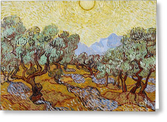 Post-impressionism Greeting Cards - Olive Trees Greeting Card by Vincent Van Gogh