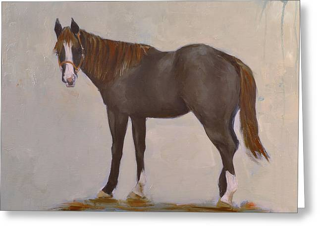 Quarter Horse Greeting Cards - Oliver Greeting Card by Cathy McIntire