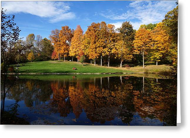 Indiana Autumn Greeting Cards - Oliver Winery 2014 Greeting Card by Chuck Johnson