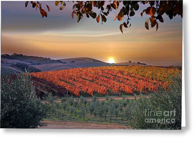 Fall Vineyard Greeting Cards - Olives and Grapes Greeting Card by Stephanie Laird