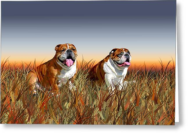 Bulldog Prints Greeting Cards - Ollie and Gunther Autumn Grass Sunset Greeting Card by Jamie Pflughoeft