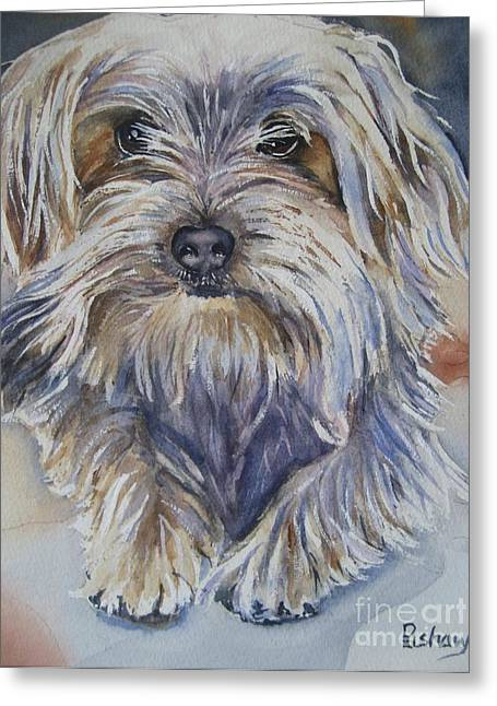 Yorkshire Terrier Watercolor Greeting Cards - Ollie Greeting Card by Patricia Pushaw