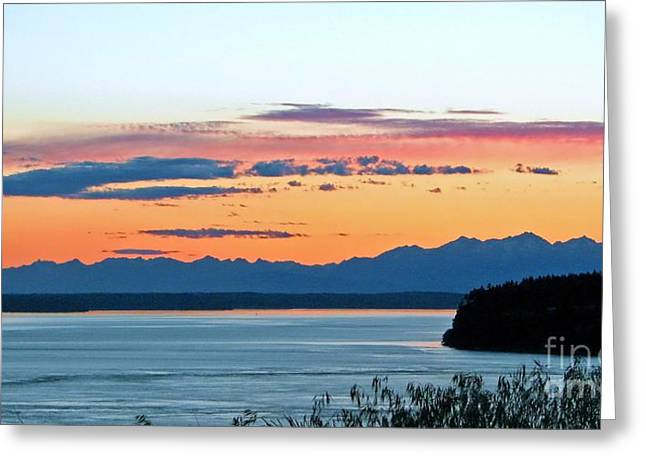 South Puget Sound Greeting Cards - Olympic Afterglow Greeting Card by Chris Anderson