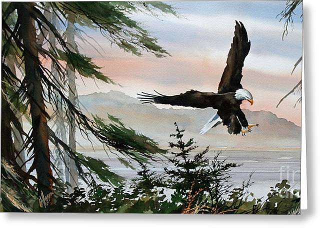 Eagle Images Greeting Cards - Olympic Coast Eagle Greeting Card by James Williamson
