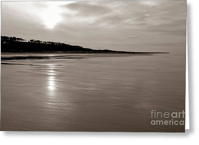 Omaha Greeting Cards - Omaha Beach Greeting Card by Olivier Le Queinec