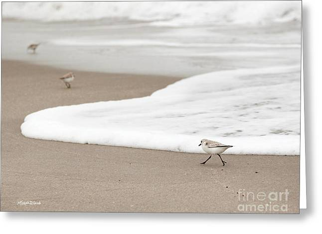 Sea Birds Greeting Cards - On a Mission Greeting Card by Michelle Wiarda