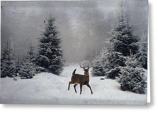 On a snowy evening Greeting Card by Lianne Schneider