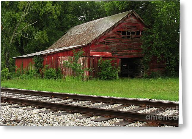 Douglas Stucky Greeting Cards - On a Tennessee Back Road Greeting Card by Douglas Stucky