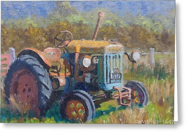 On A Westland Farm  Greeting Card by Terry Perham
