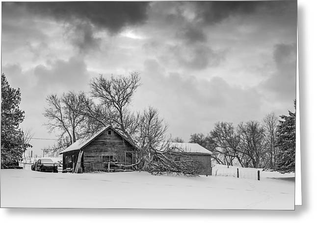 Storm Prints Greeting Cards - On a Winter Day monochrome Greeting Card by Steve Harrington