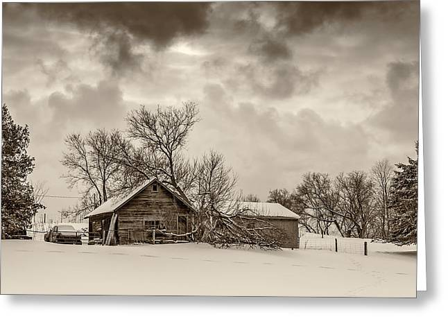 Storm Prints Greeting Cards - On a Winter Day sepia Greeting Card by Steve Harrington