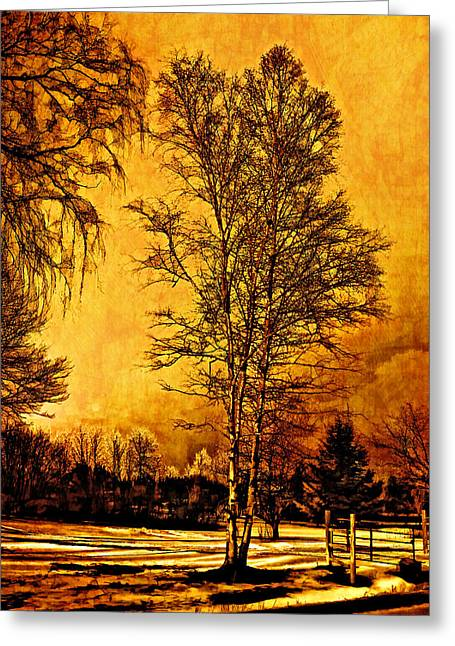 Back Roads Digital Art Greeting Cards - On a Winters Day Greeting Card by Steve Harrington