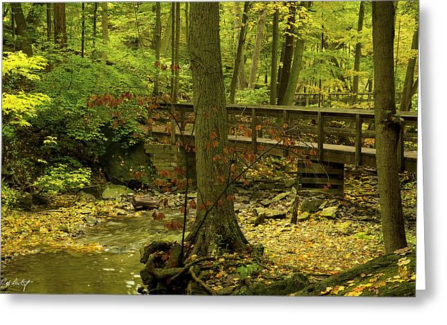 Autumn Photographs Digital Art Greeting Cards - On An Autumn Walk Greeting Card by Phill  Doherty