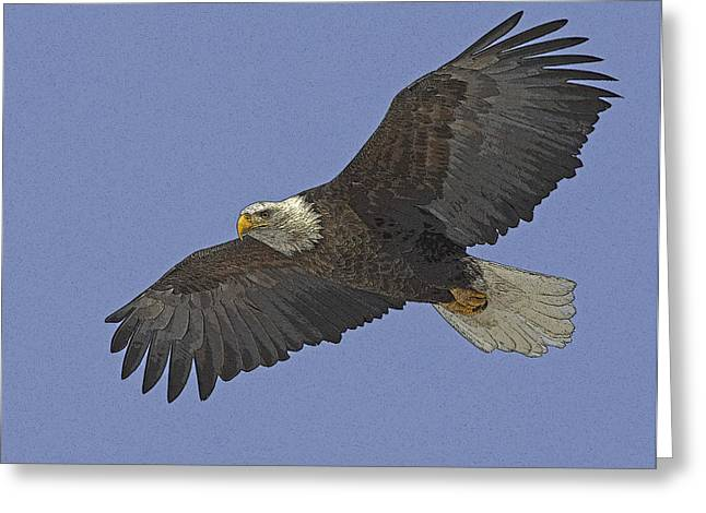 Eagle Greeting Cards - On Broad Wings- Abstract Greeting Card by Tim Grams