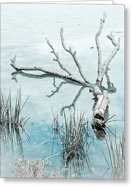 Winter Digital Photo Scene Greeting Cards - On Frozen Pond Greeting Card by Christine Smart