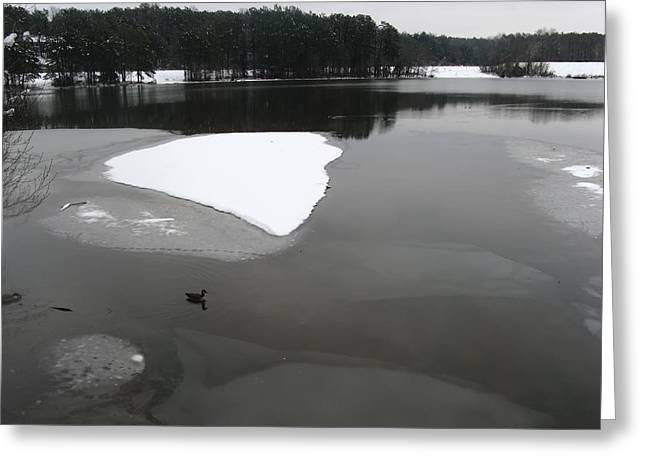 Lovely Pond Greeting Cards - On Frozen Pond Greeting Card by Pixabay
