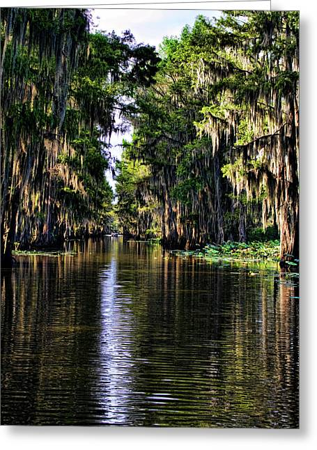 Caddo Lake Greeting Cards - On Golden Canal Greeting Card by Lana Trussell