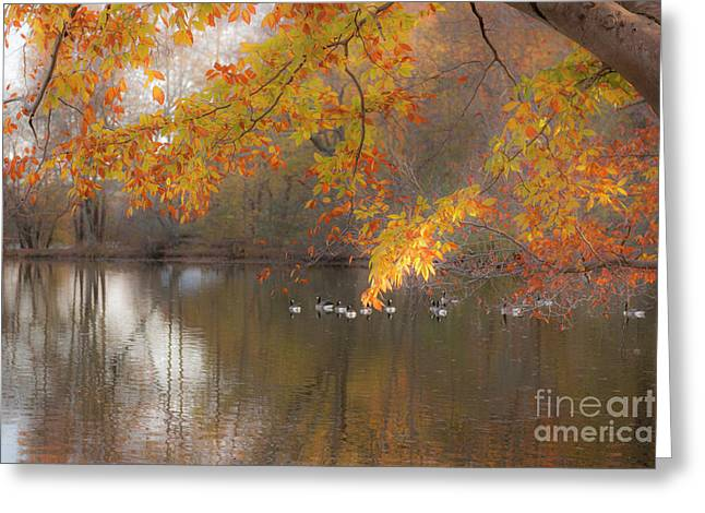 White Pickett Fences Greeting Cards - On Golden Pond Greeting Card by Dale Powell