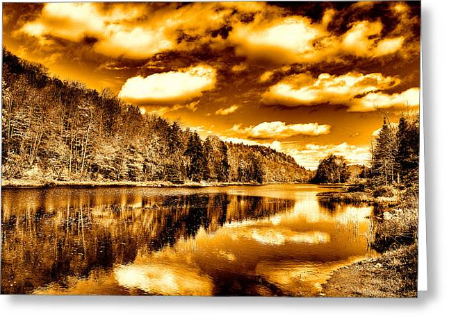 Lanscape Digital Greeting Cards - On Golden Pond Greeting Card by David Patterson