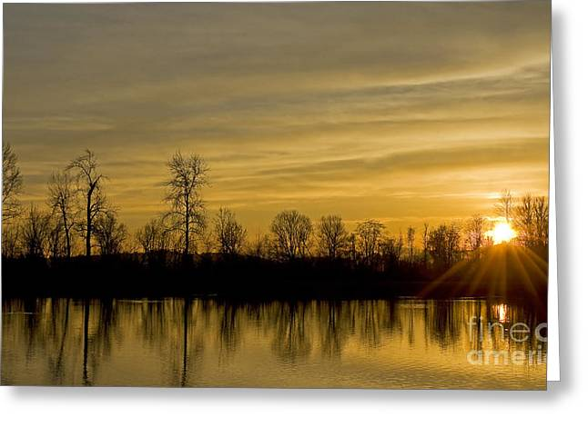 Boren Greeting Cards - On Golden Pond Greeting Card by Nick  Boren