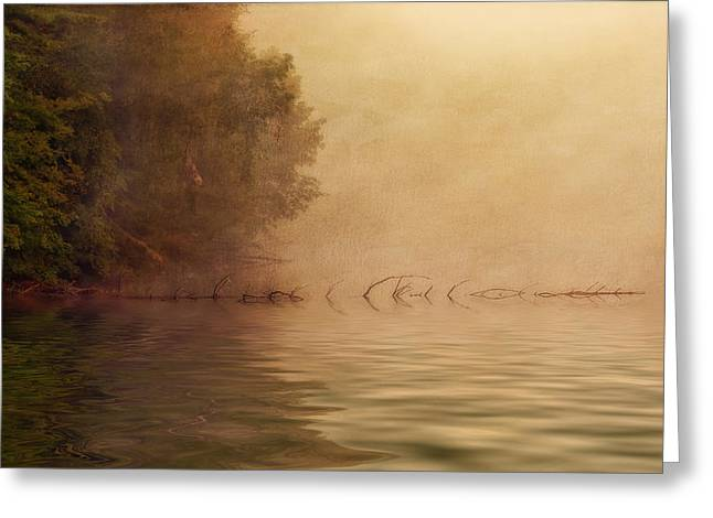 Peaceful Pond Greeting Cards - On Golden Pond Greeting Card by Tom Mc Nemar