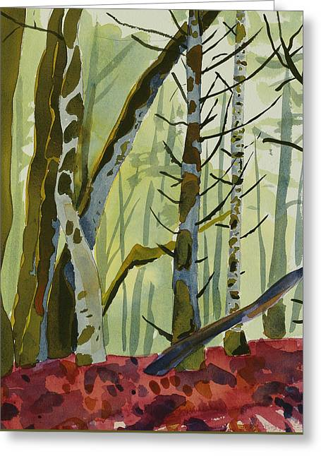 Nature Park Greeting Cards - On Ivy Hill Greeting Card by Alexandra Schaefers
