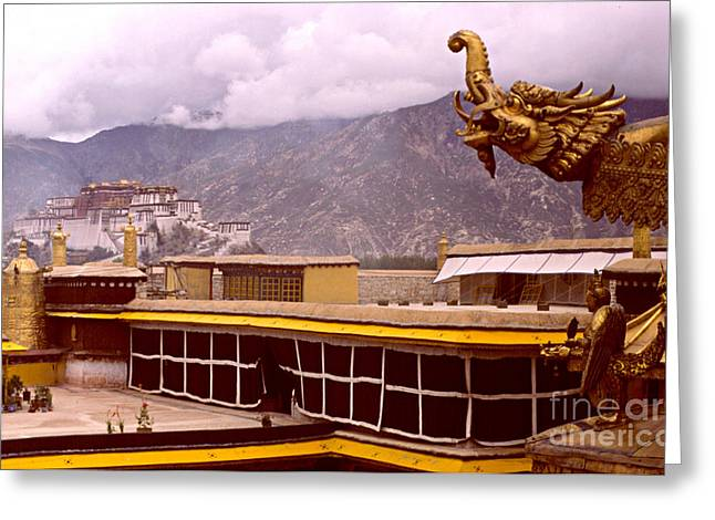 1987 Greeting Cards - On Jokhang Monastery Rooftop Greeting Card by Anna Lisa Yoder