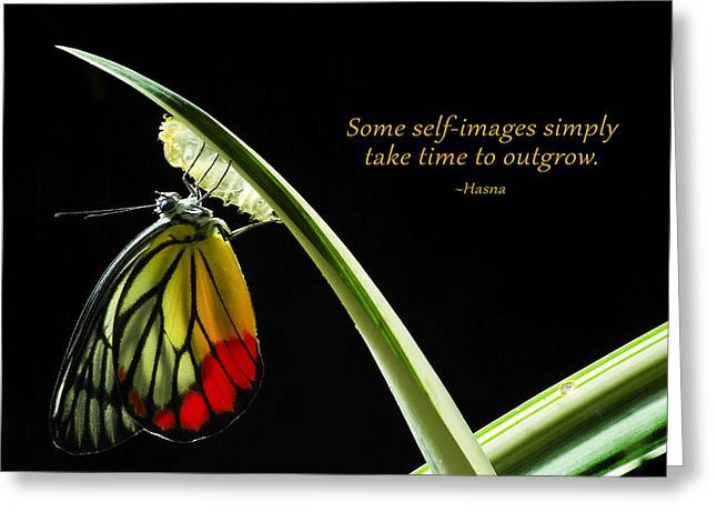 Loving Self Greeting Cards - On Patience and Self-Love Greeting Card by Hasna at Wave of Insight