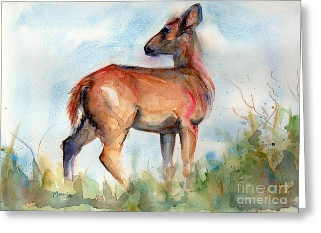 Deer On Beach Greeting Cards - On Second Thought Greeting Card by Maria